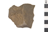 view Debitage, Material for Prehistoric Stone Tools digital asset number 1