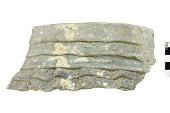 view Rim Sherd with Neck Banding, Prehistoric Southwestern Pottery Fragment digital asset number 1