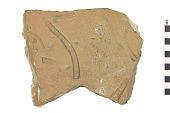 view Trace Fossil, Invertebrate Ichnofossil digital asset number 1