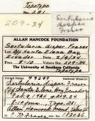 view Sertularia dispar Fraser, 1938 digital asset number 1