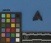 view Projectile Point, Pentagonal/1 digital asset number 1