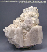 view Microcline digital asset number 1