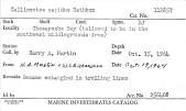 view Callinectes sapidus Rathbun, 1896 digital asset number 1