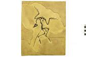 view Archaeopteryx siemensii digital asset number 1