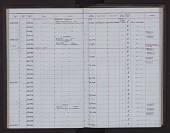 view Artibeus amplus Handley, 1987 digital asset number 1
