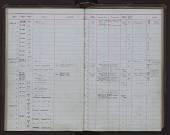view Inia geoffrensis (de Blainville, 1817) digital asset number 1