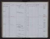 view Artibeus gnomus Handley, 1987 digital asset number 1