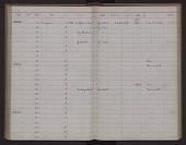 view Peromyscus crinitus pergracilis Goldman, 1939 digital asset number 1