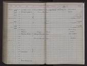 view Stenella attenuata (Gray, 1846) digital asset number 1