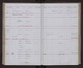 view Phocoena phocoena vomerina Gill, 1865 digital asset number 1