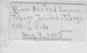 view Eudistoma olivaceum (Van Name) digital asset number 1