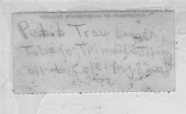 view Symplegma viride Herdman, 1886 digital asset number 1