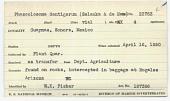view Phascolosoma dentigerum (Selenka & De Man, 1883) digital asset number 1