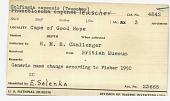 view Golfingia capensis (Teuscher) digital asset number 1