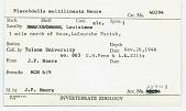 view Placobdella multilineata Moore, 1953 digital asset number 1