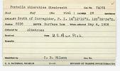 view Pontella chierchiae Giesbrecht, 1889 digital asset number 1