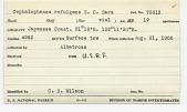 view Cephalophanes refulgens Sars, 1907 digital asset number 1