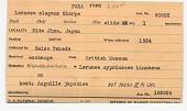 view Lernaea elegans Leigh-Sharpe, 1925 digital asset number 1