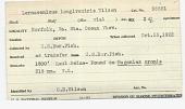 view Lernaeenicus longiventris Wilson, 1917 digital asset number 1
