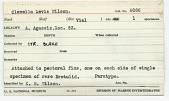 view Clavella levis Wilson, 1915 digital asset number 1