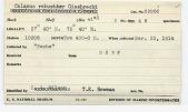 view Calanus robustior Giesbrecht, 1888 digital asset number 1