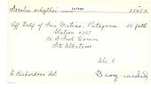 view Serolis schythei Lutken, 1858 digital asset number 1