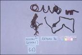 view Vegetable & Woolen Strings For Mummy (A11059-0) digital asset number 1