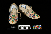 view Pair Of Moccasins digital asset number 1