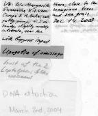 view Upogebia omissa Gomez-Correa, 1968 digital asset number 1