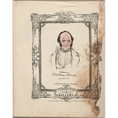 view The National Plumbeotype Gallery - Martin Van Buren digital asset number 1