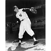 view Mickey Mantle digital asset number 1