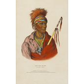 view Not-chi-mi-ne - An Ioway Chief digital asset number 1