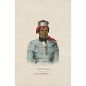 view Chittee Yoholo - A Seminole Chief digital asset number 1