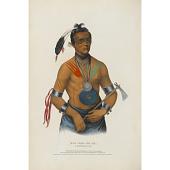 view Hoo-wan-ne-ka - A Winnebago Chief digital asset number 1