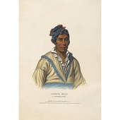 view Spring Frog - A Cherokee Chief digital asset number 1