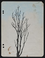thumbnail image for Sketch of a tree