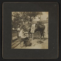 thumbnail image for Marjorie Martinet painting a horse