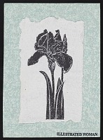 thumbnail image for Postcard featuring lithograph of iris
