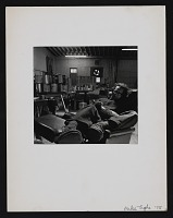 thumbnail image for Photograph of Frank Stella with his cat Marisol in his studio