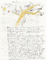 thumbnail image for Miné Okubo letter to Roy Leeper