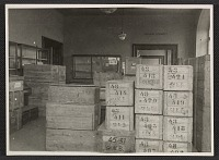 thumbnail image for Storage room filled with crates at Wiesbaden Collecting Point