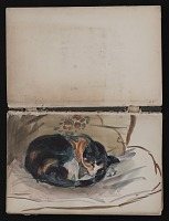 thumbnail image for Sketchbook of cats