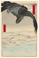 view Plain at Suzaki Fukagawa (Fukagaw Susaki, Juman-tsubo) From the Series One hundred Views of Edo digital asset number 1