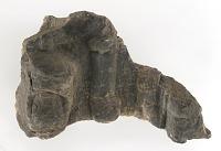 view Sculpture Fragments digital asset number 1