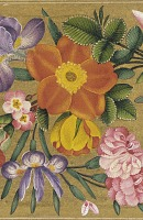 view Page from the St. Petersburg Album: Floral border, enclosing F42.16a digital asset number 1
