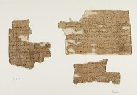 view Two papyrus fragments digital asset number 1