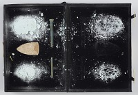 view Three (3) Glass cicadas, glass rod - broken digital asset number 1