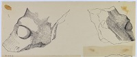 view Excavation of Pasargadae (Iran): Palace 'S': Drawing of Fragmentary Black Stone Impost Capital Modelled on a Horse Head [drawing] digital asset number 1