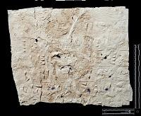 """view SQ 21: Naqsh-i Rustam: print marked. """"Akk. Ia' 1--2"""" digital asset: Naqsh-i Rustam (Iran): Squeeze of Inscription, DNb, Akkadian Version, on the Tomb of Darius I"""