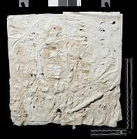 """view SQ 29: Naqsh-i Rustam: print marked. """"Akk. II b' 5--10"""" digital asset: Naqsh-i Rustam (Iran): Squeeze of Inscription, DNb, Akkadian Version, on the Tomb of Darius I"""
